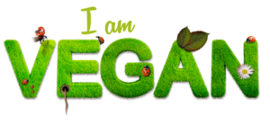vegan 1091086 1920 300x139 - Best Decision In Life - To Become a Vegan