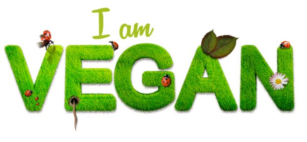 vegan 1091086 1920 624x289 - Best Decision In Life - To Become a Vegan